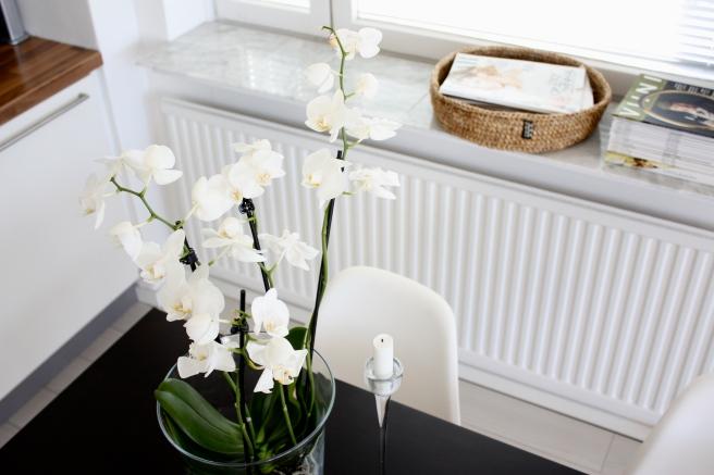 homevialaura_keittiö_9